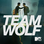 Team Wolf: The Official Teen Wolf