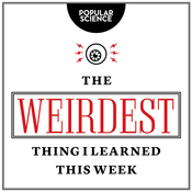 The Weirdest Thing I Learned This Week