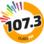 Rádio Ouro 107 FM